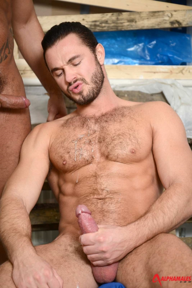 Jessy-Ares-and-Tiko-Alphamales-gay-porn-star-muscle-hunk-ass-fuck-man-hole-muscle-gay-sex-10-pics-gallery-tube-video-photo