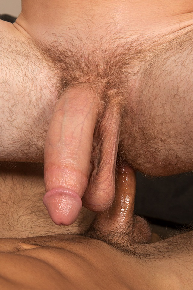 Noel and Stu SeanCody bareback gay porn naked men ass fuck American boys male muscle jocks raw butt fucking sex 007 gallery photo - Noel and Stu
