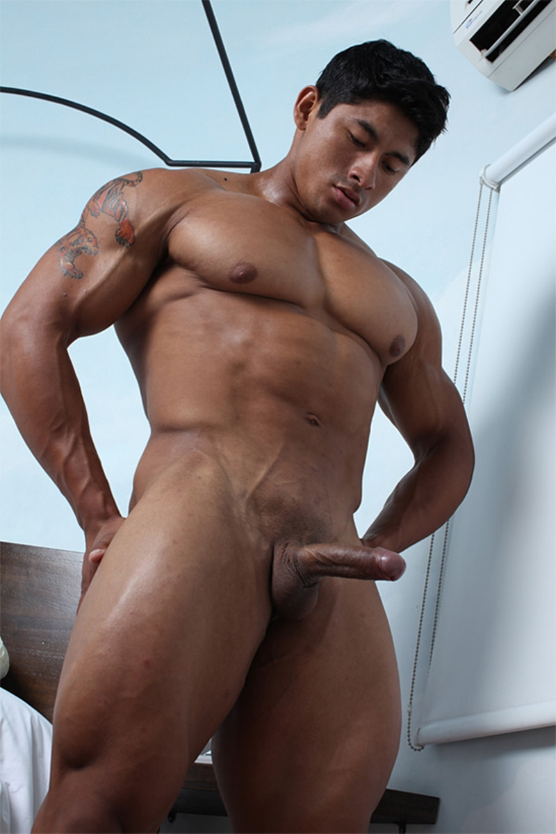 nude Bodybuilder asian muscle