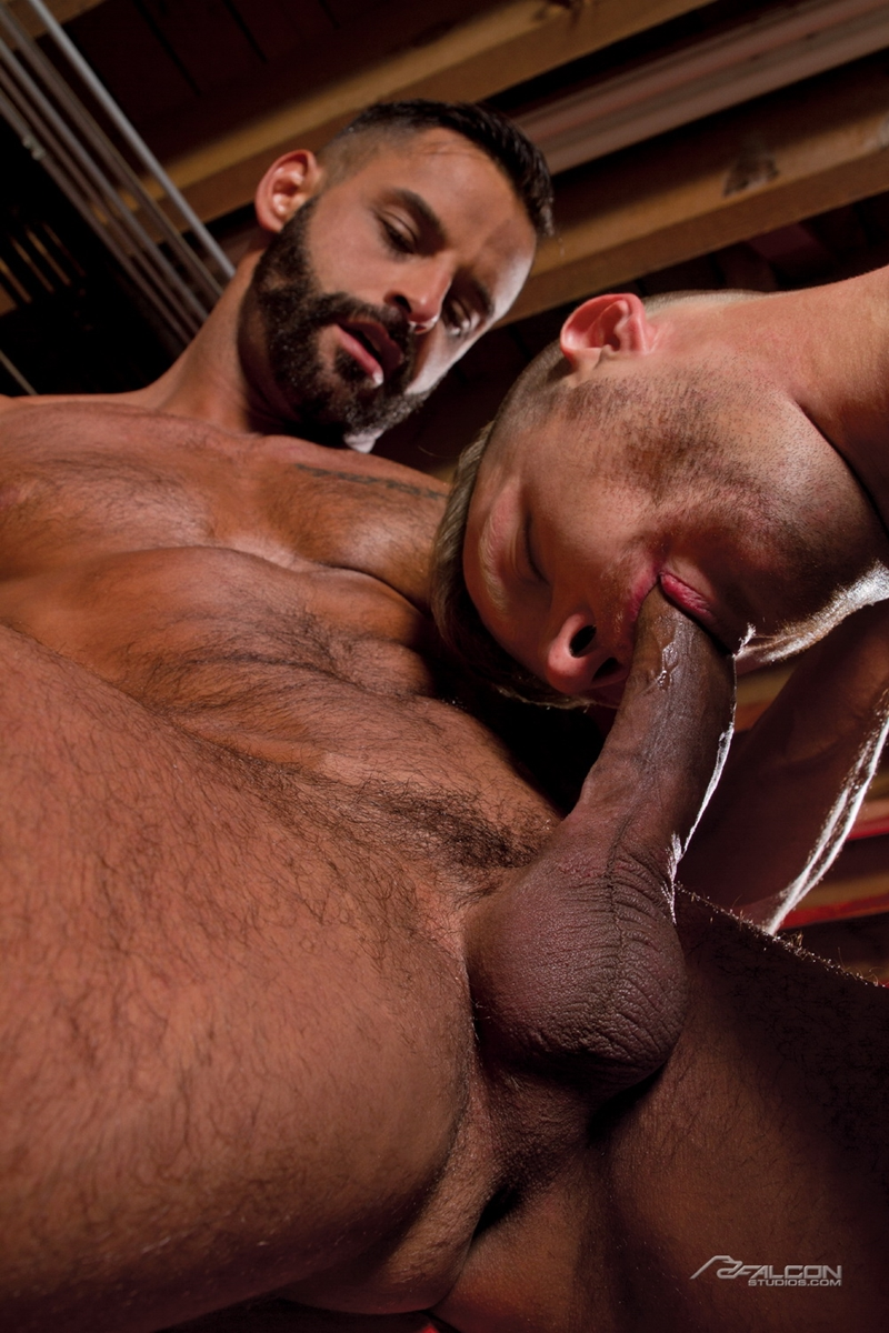 falcon studios  FalconStudios Sweat Brian Bonds David Benjamin ass fucking hairy chest naked men big cock blow job cum swallowing 003 tube video gay porn gallery sexpics photo Brian Bonds fucks David Benjamin