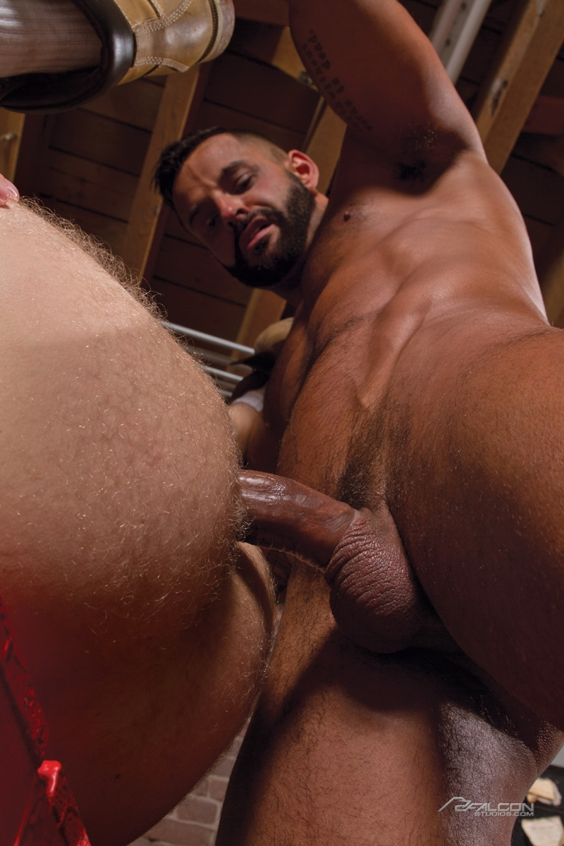 falcon studios  FalconStudios Sweat Brian Bonds David Benjamin ass fucking hairy chest naked men big cock blow job cum swallowing 012 tube video gay porn gallery sexpics photo Brian Bonds fucks David Benjamin