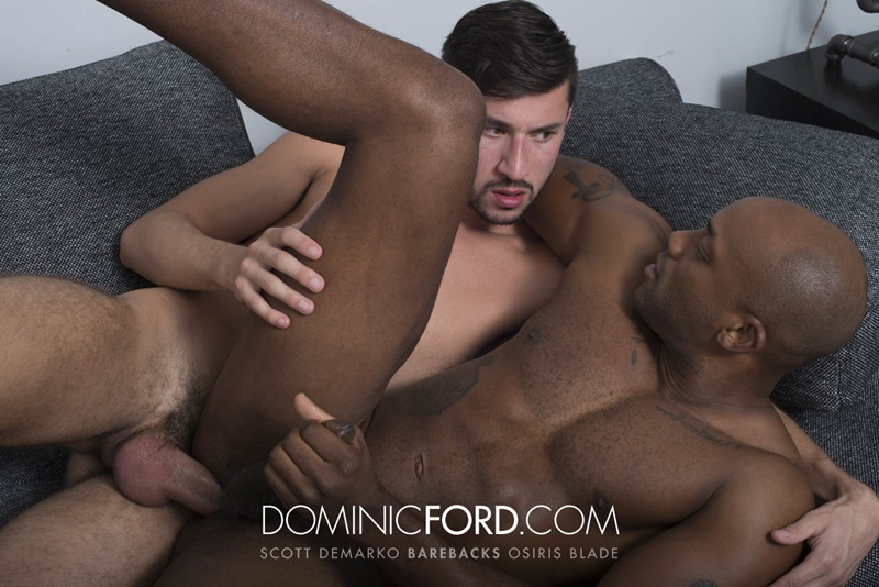 DominicFord hot naked big muscle dudes Bareback Scott DeMarco Breeds Osiris Blade raw big thick large dick sucking anal rimming 010 gay porn sex gallery pics video photo - Bareback: Scott DeMarco Breeds Osiris Blade's raw asshole