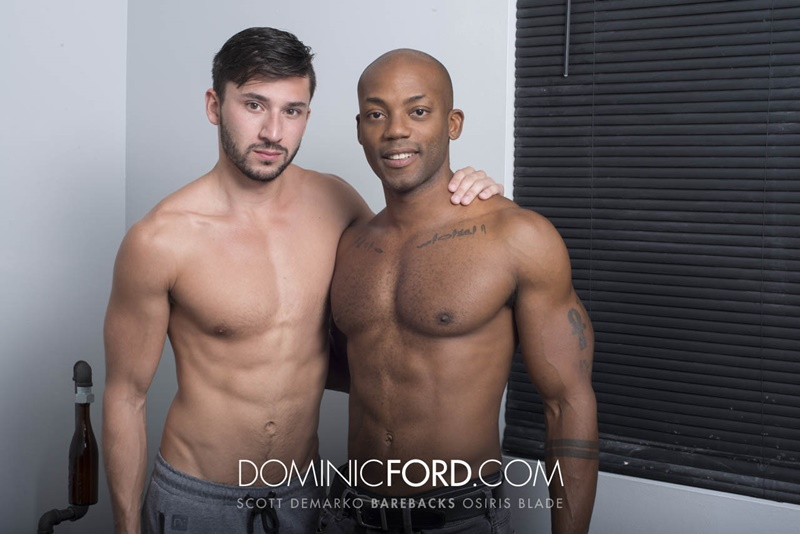 DominicFord hot naked big muscle dudes Bareback Scott DeMarco Breeds Osiris Blade raw big thick large dick sucking anal rimming 016 gay porn sex gallery pics video photo - Bareback: Scott DeMarco Breeds Osiris Blade's raw asshole
