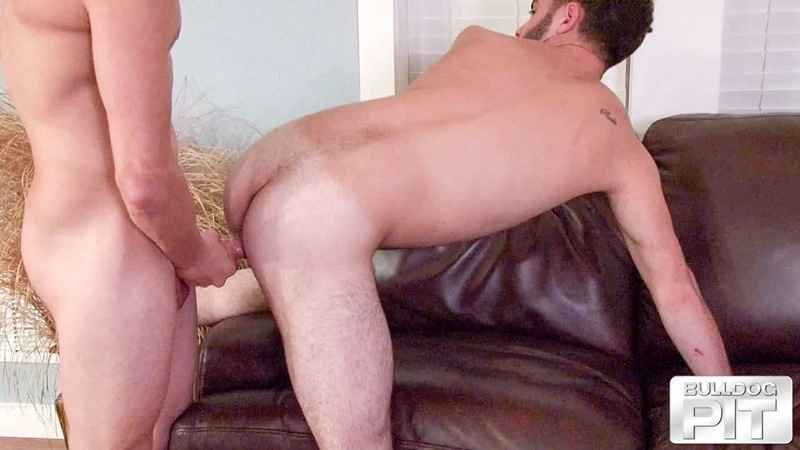 BulldogPit gay porn nude dude sex pics Xavier Daniels Josh Long huge cock deep tight hairy hole anal rimming young studs fuck 005 gay porn sex gallery pics video photo - Xavier Daniels put Josh Long on all fours pressing his huge cock deep into his tight hairy hole