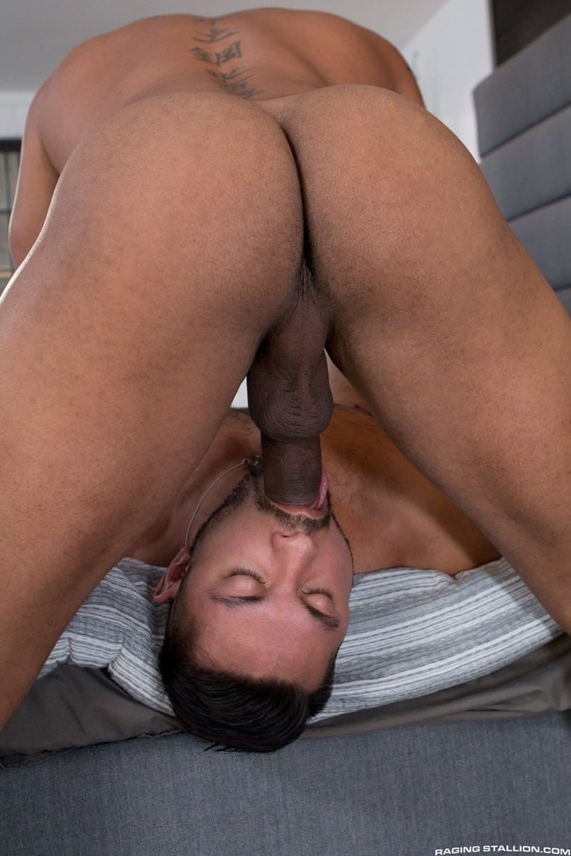 Men for Men Blog RagingStallion-hot-naked-big-muscle-guys-Jason-Vario-Seth-Santoro-hairy-crotch-jizz-orgasm-009-gallery-video-photo Jason Vario pulls out to cover Seth Santoro's hairy crotch with jizz Raging Stallion  tongue Streaming Gay Movies Smooth Seth Santoro tumblr Seth Santoro tube Seth Santoro torrent Seth Santoro RagingStallion com Seth Santoro pornstar Seth Santoro porno Seth Santoro porn Seth Santoro Penis Seth Santoro nude Seth Santoro naked Seth Santoro myvidster Seth Santoro gay pornstar Seth Santoro gay porn Seth Santoro gay Seth Santoro gallery Seth Santoro fucking Seth Santoro Cock Seth Santoro bottom Seth Santoro blogspot Seth Santoro ass ragingstallion.com RagingStallion Tube RagingStallion Torrent RagingStallion Seth Santoro RagingStallion Jason Vario raging stallion premium gay sites Porn Gay nude RagingStallion naked RagingStallion naked man jockstrap jock Jason Vario tumblr Jason Vario tube Jason Vario torrent Jason Vario RagingStallion com Jason Vario pornstar Jason Vario porno Jason Vario porn Jason Vario penis Jason Vario nude Jason Vario naked Jason Vario myvidster Jason Vario gay pornstar Jason Vario gay porn Jason Vario gay Jason Vario gallery Jason Vario fucking Jason Vario cock Jason Vario bottom Jason Vario blogspot Jason Vario ass hot naked RagingStallion Hot Gay Porn hole HIS gay video on demand gay vid gay streaming movies Gay Porn Videos Gay Porn Tube Gay Porn Blog Free Gay Porn Videos Free Gay Porn face Cock cheeks cheek ass