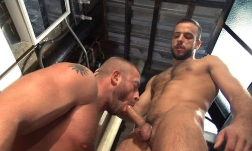 Hardcore gay anal orgy with Jessy Ares, Hunter Marx, Devin Adams, Brad Kalvo, Stany Falcone and Ford Andrews