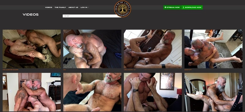 House of Angell Videos Honest Gay Porn Site Review - House of Angell - Gay Porn Site Review